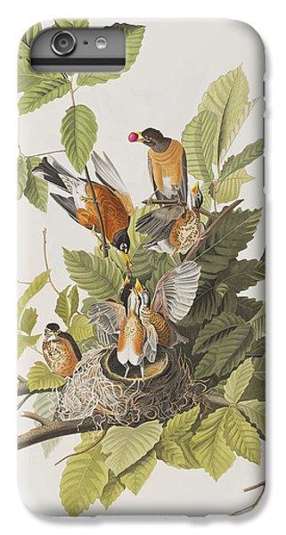 American Robin IPhone 6 Plus Case