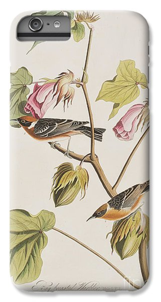 Bay Breasted Warbler IPhone 6 Plus Case by John James Audubon