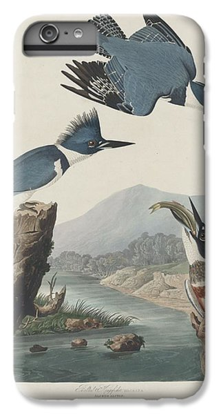 Belted Kingfisher IPhone 6 Plus Case by Rob Dreyer