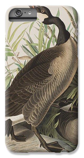 Canada Goose IPhone 6 Plus Case by John James Audubon