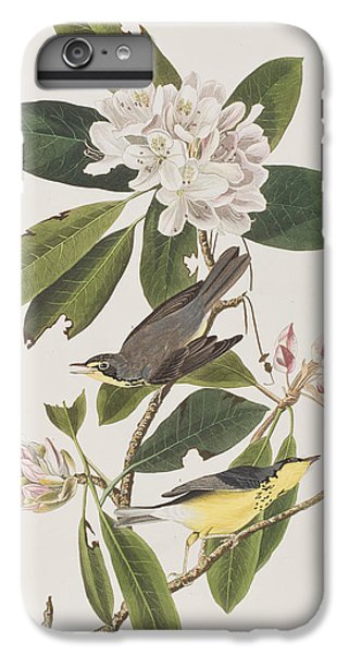 Canada Warbler IPhone 6 Plus Case by John James Audubon