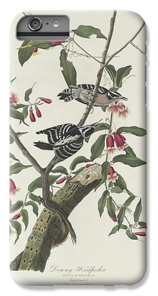 Downy Woodpecker IPhone 6 Plus Case by Dreyer Wildlife Print Collections