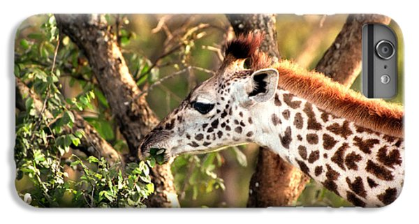 Giraffe IPhone 6 Plus Case by Sebastian Musial