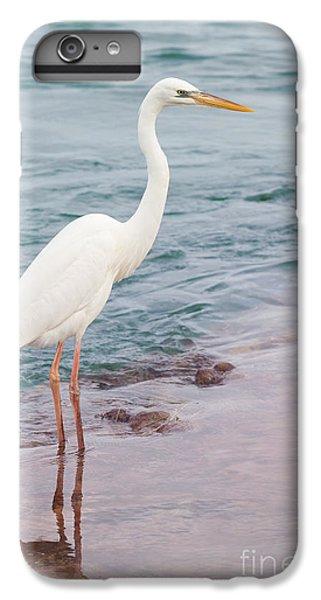 Great White Heron IPhone 6 Plus Case by Elena Elisseeva