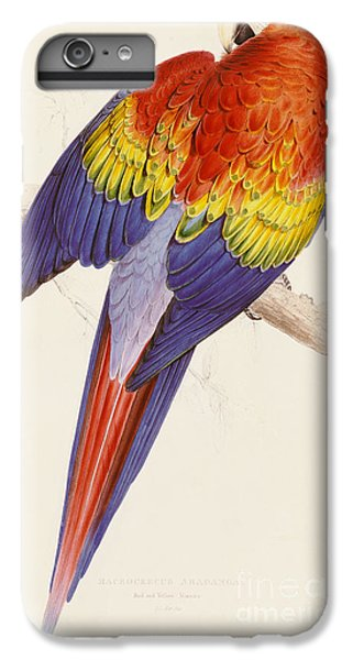 Red And Yellow Macaw IPhone 6 Plus Case by Edward Lear