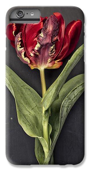 Tulip iPhone 6 Plus Case - Tulip by Nailia Schwarz