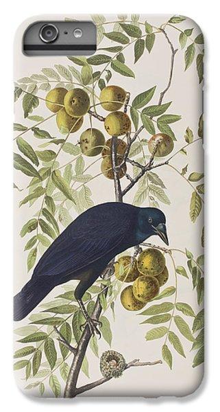 American Crow IPhone 6 Plus Case by John James Audubon
