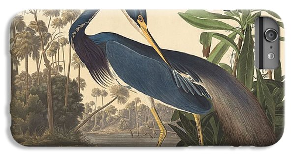 Ibis iPhone 6 Plus Case - Louisiana Heron by Dreyer Wildlife Print Collections