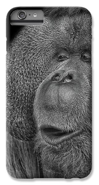 Orangutan IPhone 6 Plus Case
