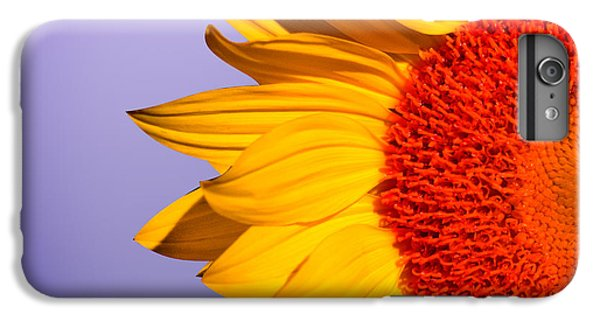Sunflower iPhone 6 Plus Case - Sunflowers by Mark Ashkenazi
