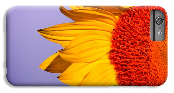 Sunflowers IPhone 6 Plus Case by Mark Ashkenazi