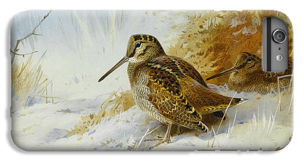 Winter Woodcock IPhone 6 Plus Case by Archibald Thorburn