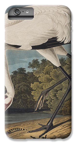 Whooping Crane IPhone 6 Plus Case by John James Audubon