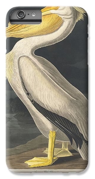 American White Pelican IPhone 6 Plus Case by Rob Dreyer
