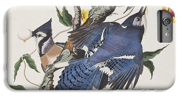 Bluejay iPhone 6 Plus Case - Blue Jay by John James Audubon