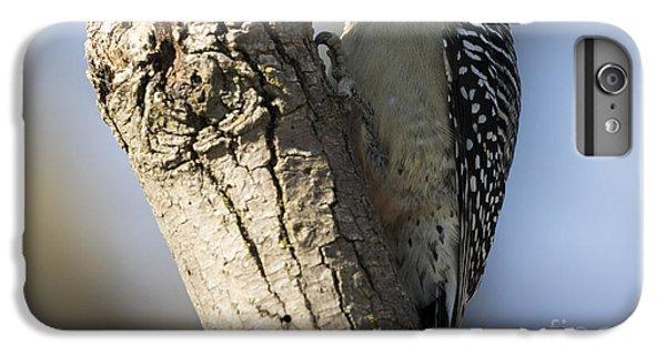 Red-bellied Woodpecker IPhone 6 Plus Case by Ricky L Jones