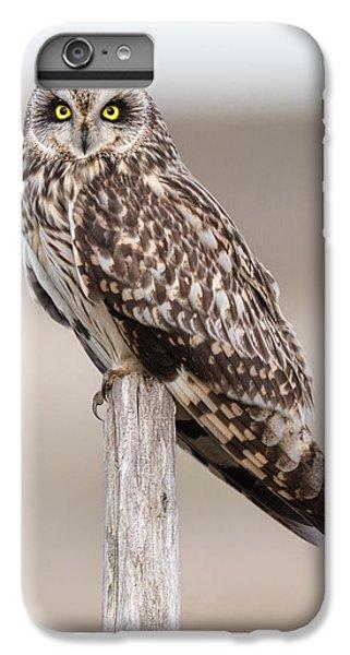 Short Eared Owl IPhone 6 Plus Case