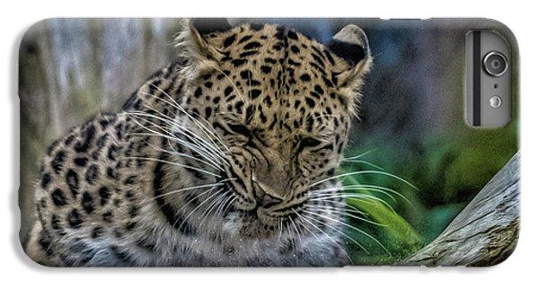 Amur Leopard IPhone 6 Plus Case by Martin Newman