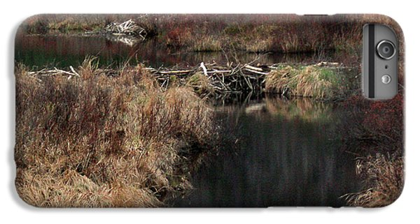 A Beaver's Work IPhone 6 Plus Case by Skip Willits