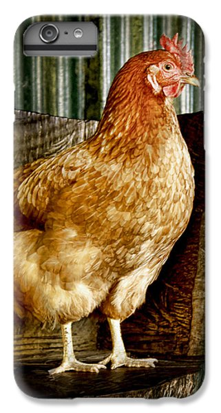 iPhone 6 Plus Case - A Chicken Named Rembrandt by Holly Kempe
