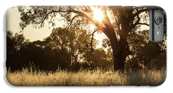 IPhone 6 Plus Case featuring the photograph A Golden Afternoon by Linda Lees
