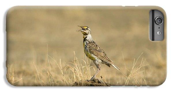 A Juvenile Western Meadowlark IPhone 6 Plus Case