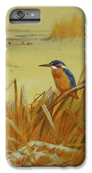 Kingfisher iPhone 6 Plus Case - A Kingfisher Amongst Reeds In Winter by Archibald Thorburn