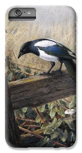 Magpies iPhone 6 Plus Case - A Magpie Observing Field Mice by Johan Gerard Keulemans