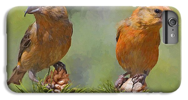Crossbill iPhone 6 Plus Case - A Pair Of Male Red Crossbills - Painted by Ericamaxine Price