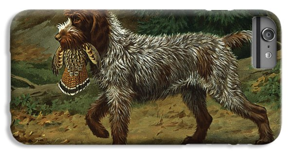 A Wire-haired Pointing Griffon Holds IPhone 6 Plus Case