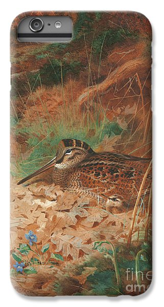 A Woodcock And Chick In Undergrowth IPhone 6 Plus Case by Archibald Thorburn