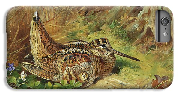 A Woodcock And Chicks IPhone 6 Plus Case by Archibald Thorburn