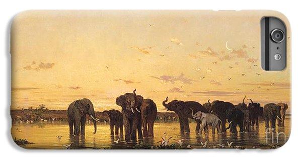 African Elephants IPhone 6 Plus Case
