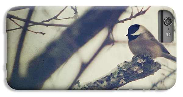 Chickadee iPhone 6 Plus Case - Against The Wind by Amy Tyler