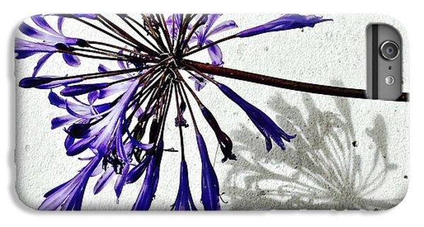 Agapanthus IPhone 6 Plus Case