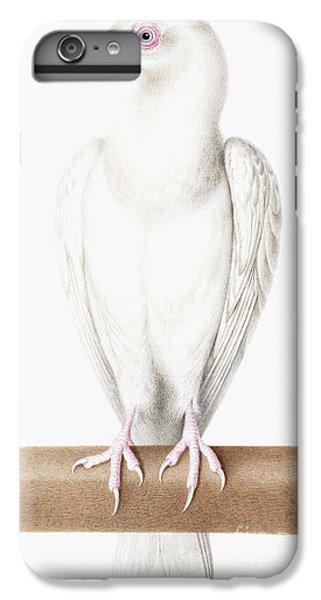 Albino Crow IPhone 6 Plus Case