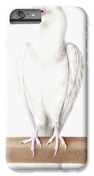 Albino Crow IPhone 6 Plus Case by Nicolas Robert
