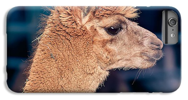 Alpaca Wants To Meet You IPhone 6 Plus Case by TC Morgan