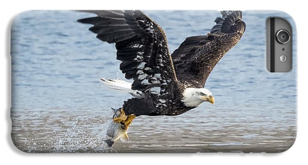 American Bald Eagle Taking Off IPhone 6 Plus Case by Ricky L Jones