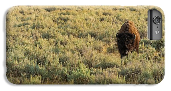 American Bison IPhone 6 Plus Case by Sebastian Musial