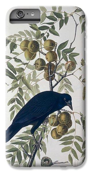 American Crow IPhone 6 Plus Case