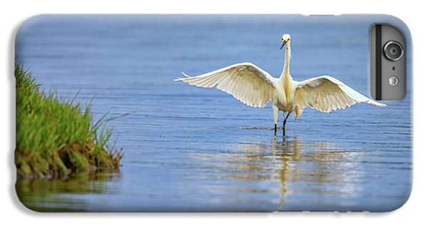 An Egret Spreads Its Wings IPhone 6 Plus Case by Rick Berk