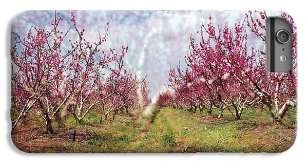 An Orchard In Blossom In The Golan Heights IPhone 6 Plus Case