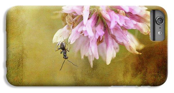 Ant iPhone 6 Plus Case - Ant Acrobatics by Susan Capuano