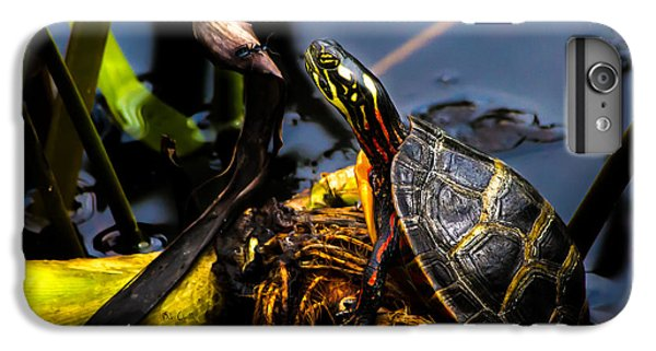 Ant Meets Turtle IPhone 6 Plus Case by Bob Orsillo