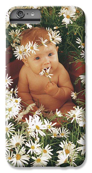 Daisies IPhone 6 Plus Case by Anne Geddes