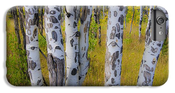 IPhone 6 Plus Case featuring the photograph Aspens by Gary Lengyel