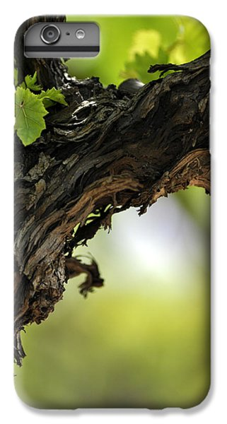 IPhone 6 Plus Case featuring the photograph At Lachish Vineyard by Dubi Roman
