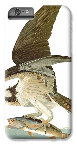 Osprey iPhone 6 Plus Case - Audubon: Osprey by Granger