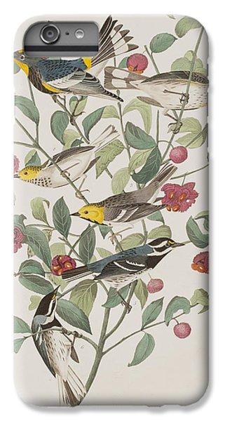 Audubons Warbler Hermit Warbler Black-throated Gray Warbler IPhone 6 Plus Case
